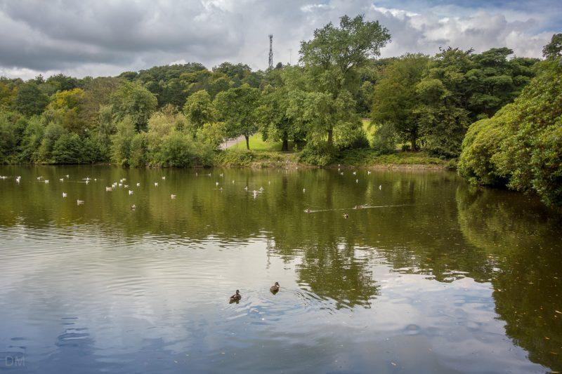 The main lake at Corporation Park in Blackburn, Lancashire.