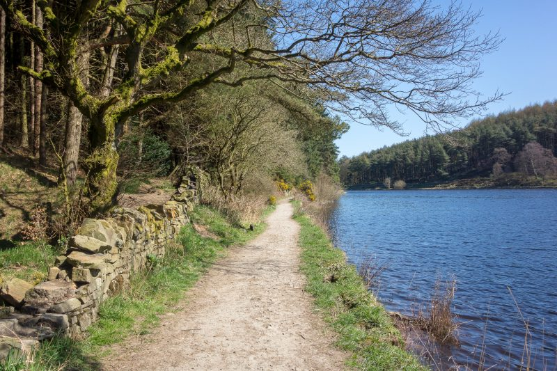 Footpath on the northern shore of Turton and Entwistle Reservoir.