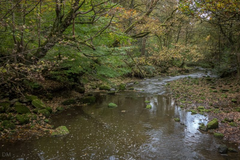 Photograph of Bradshaw Brook at Jumbles Country Park in Bolton.