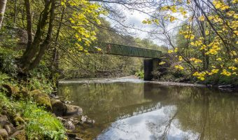 Photograph of a footbridge over the River Irwell. Situated just south of Nuttall Park, Ramsbottom.