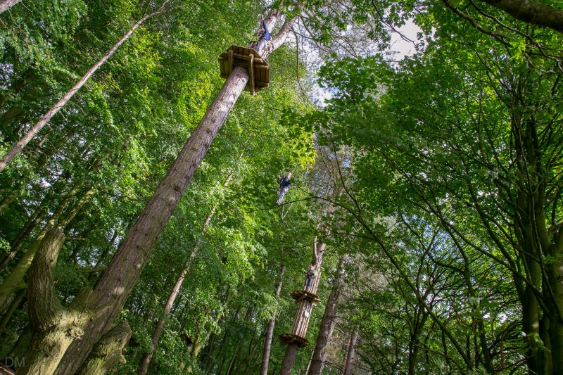 High ropes course at Go Ape, Rivington. Located in the woodland to the east of Lower Rivington Reservoir.