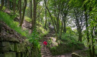 Photograph of walkers on the footpath to the Japanese Garden at Rivington Terraced Gardens in Rivington.