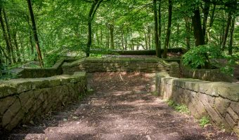 Photo of stone steps in Rivington Terraced Gardens.