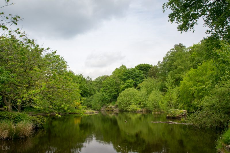 Photograph of the lake at the Japanese Garden, Rivington Terraced Gardens, Rivington.