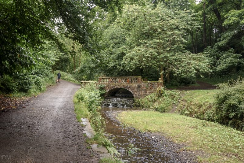 Bridge over Sunnyhurst Brook in Sunnyhurst Wood, Darwen.