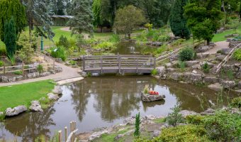 Photo of the Japanese Garden, Avenham Park, Preston.