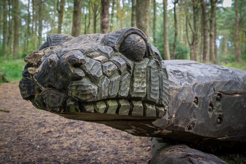 Photograph of Walking Snake, a sculpture by Thompson Dagnall. Located at Beacon Fell Country Park.