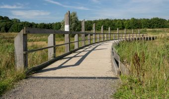 Photograph of walkway on the Gravel Pit Trail at Brockholes.