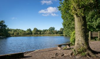 Photo of Cuerden Lake at Cuerden Valley Park, Bamber Bridge.