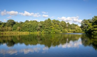 Photograph of Cuerden Lake at Cuerden Valley Park, near Preston.