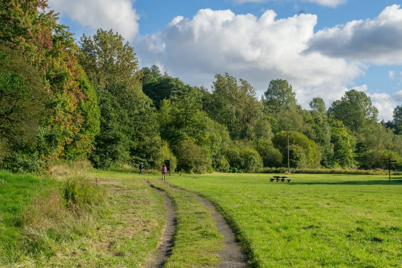 Photograph of the picnic area at Cuerden Valley Park, Bamber Bridge, Lancashire.