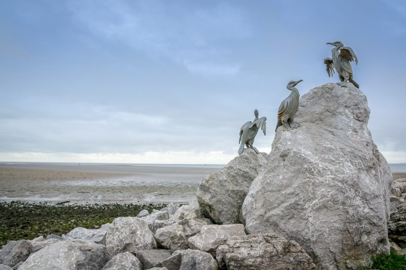 Photograph of Cormorants by Brian Fell and Gordon Young. Located at the Stone Jetty, Morecambe Promenade.
