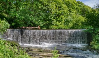 Photo of Birkacre Weir on the River Yarrow. Taken at Yarrow Valley Country Park in Chorley, Lancashire.