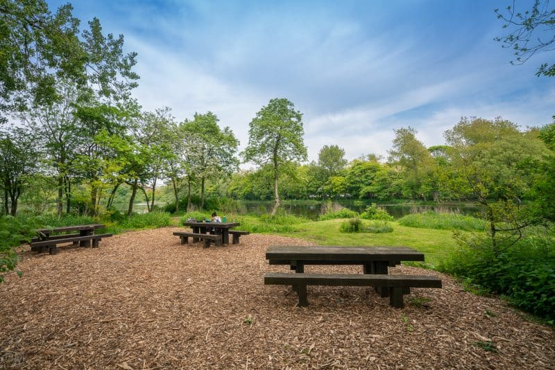 Photograph of a picnic area with tables at Stanley Park, Blackpool.