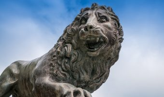 Photograph of one of the Medici Lions at Stanley Park, Blackpool, Lancashire.