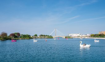 Photograph of swan pedalos on Marine Lake, Southport, Merseyside.
